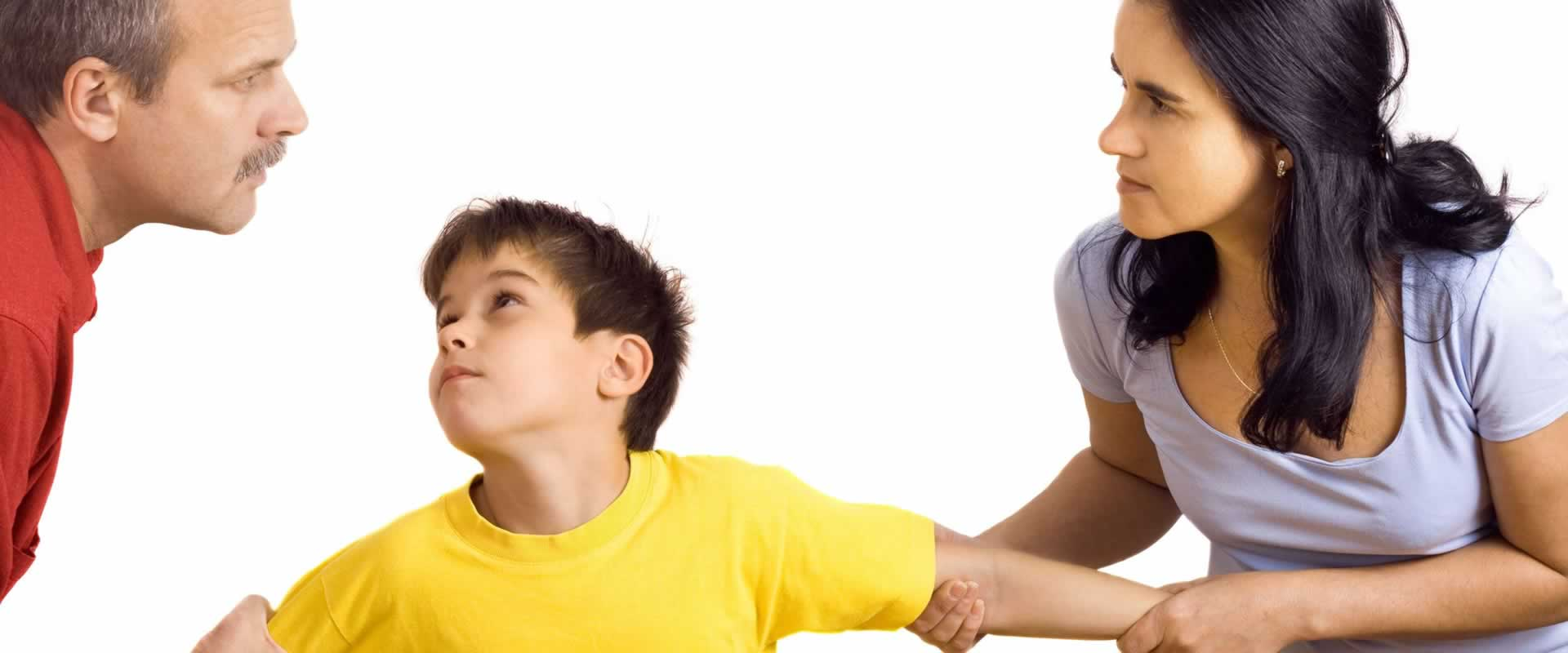 Child Custody Investigator Denver